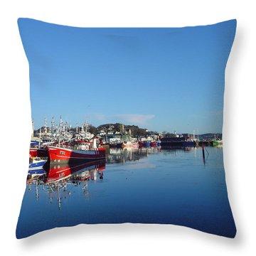 Killeybeggs Harbor Throw Pillow