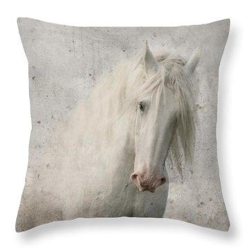 Beautiful Throw Pillows
