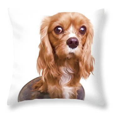 King Charles Spaniel Puppy Throw Pillow by Edward Fielding