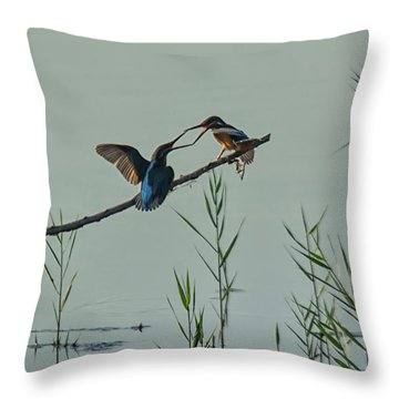 King Fishers  Throw Pillow