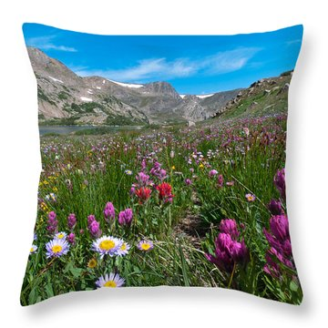 Throw Pillow featuring the photograph King Lake Summer Landscape by Cascade Colors