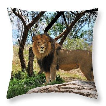 King Of His Domain Throw Pillow