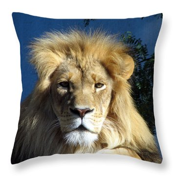 King Of The Beasts Throw Pillow by George Jones