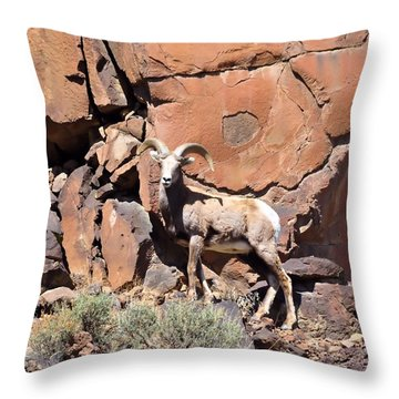 King Of The Cliff Throw Pillow