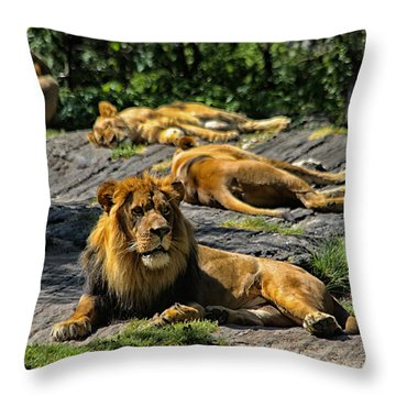 King Of The Pride Throw Pillow by Karol Livote