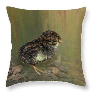 King Quail Chick Throw Pillow