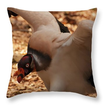 King Vulture 1 Throw Pillow by Chris Flees