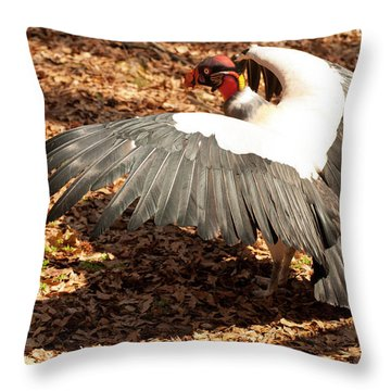 King Vulture 3 Strutting Throw Pillow by Chris Flees