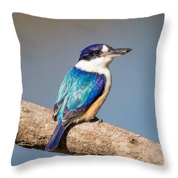 Kingfisher Throw Pillow