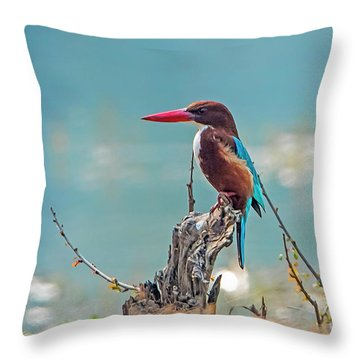 Kingfisher On A Stump Throw Pillow