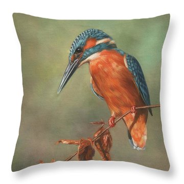 Kingfisher Perched Throw Pillow