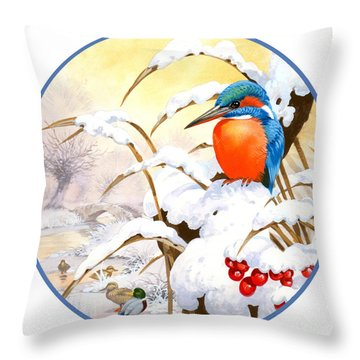 Kingfisher Plate Throw Pillow by John Francis