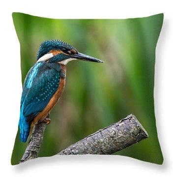 Kingfisher Pose Throw Pillow