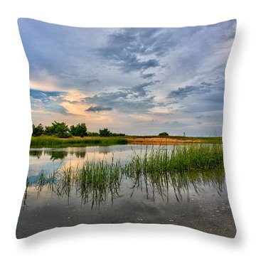 Kings Park Bluffs Throw Pillow