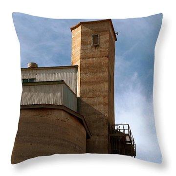Kingscote Castle Throw Pillow