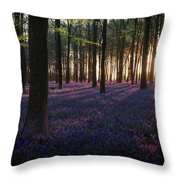 Kingswood Bluebells Sunrise Throw Pillow