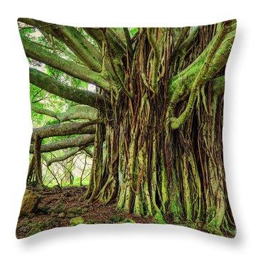 Kipahulu Banyan Tree Throw Pillow by Inge Johnsson