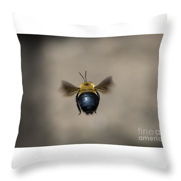 Kiss My Beehind  Throw Pillow