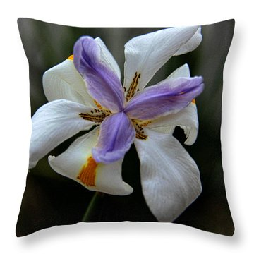 Throw Pillow featuring the photograph Kiss Of Wind by Tammy Espino