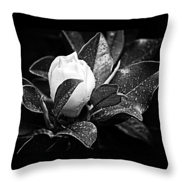Throw Pillow featuring the photograph Kissed By Rain by Carolyn Marshall