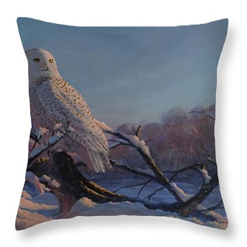 Kissed By The Sun Throw Pillow