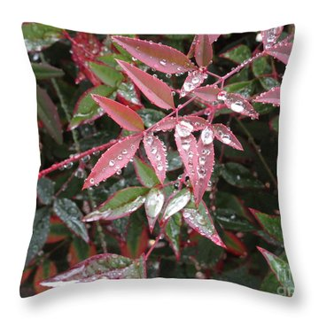 Kissed With Moisture Throw Pillow by Marie Neder