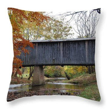 Throw Pillow featuring the photograph Kissing Bridge At Fall by Eric Liller
