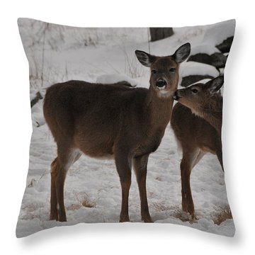 Kissing One Dear Throw Pillow by Mike Martin