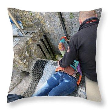 Kissing The Stone Throw Pillow
