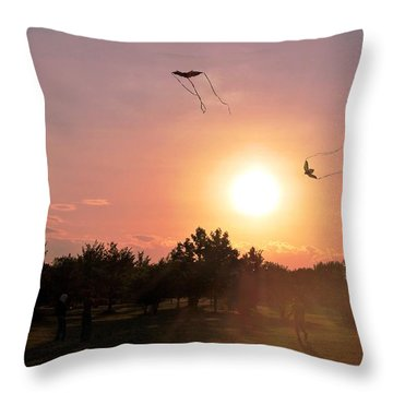 Kites Flying In Park Throw Pillow