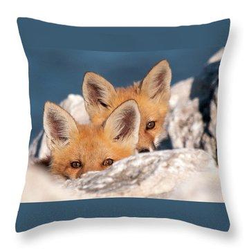 Kits Throw Pillow