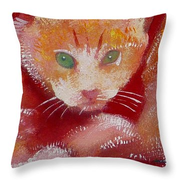 Kitten Throw Pillow by Charles Stuart