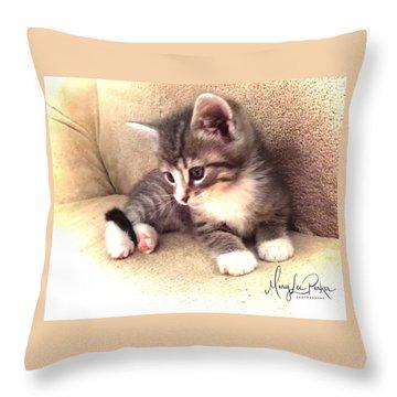 Kitten Deep In Thought Throw Pillow