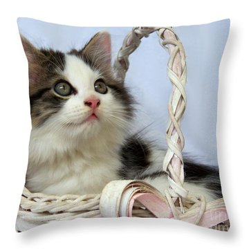 Kitten In Basket Throw Pillow by Jai Johnson