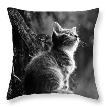 Kitten In The Tree Throw Pillow