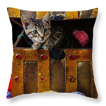 Treasure Box Throw Pillows