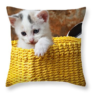 Kitten In Yellow Basket Throw Pillow by Garry Gay