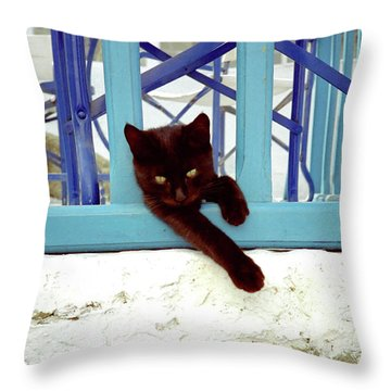 Kitten With Blue Rail Throw Pillow