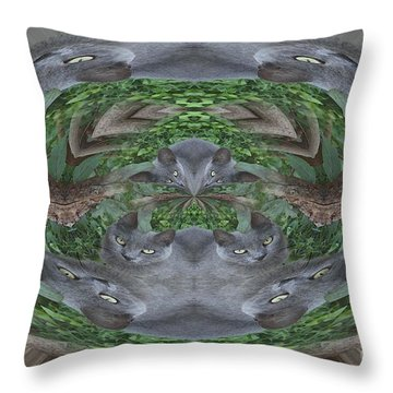 Kitty Abstract  Throw Pillow