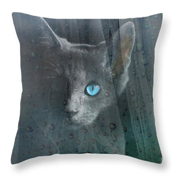 Kitty At The Window Throw Pillow