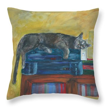Kitty Comfort Throw Pillow