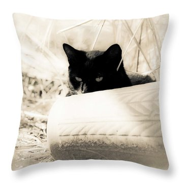Kitty Stalks In Sepia Throw Pillow