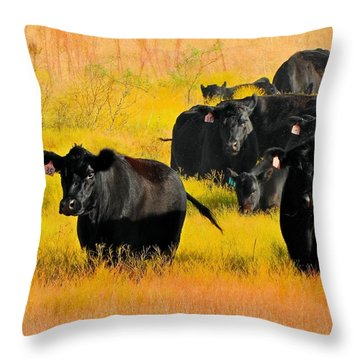 Knee High In Color Throw Pillow