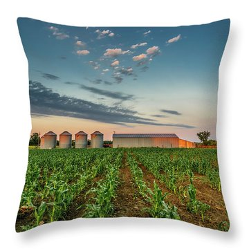 Knee High Sweet Corn Throw Pillow