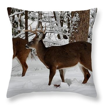 Knights Of The Round Table Throw Pillow By Jimmy Marlow