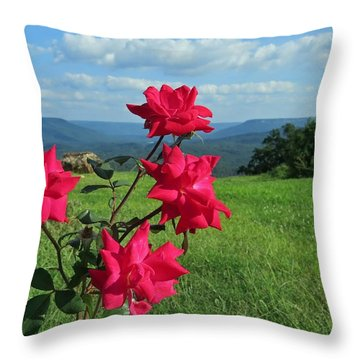 Throw Pillow featuring the photograph Knockout Rose 2 by Aaron Martens