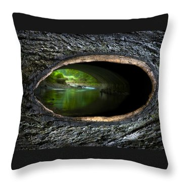 Knot Hole 2 Throw Pillow