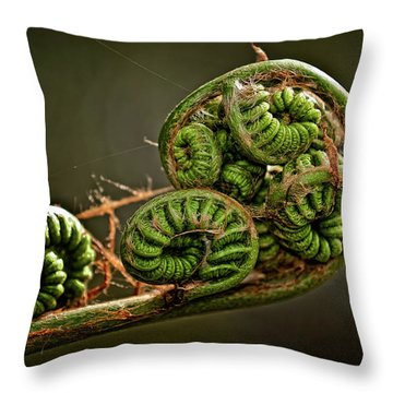 Knotted Throw Pillow by Christopher Holmes