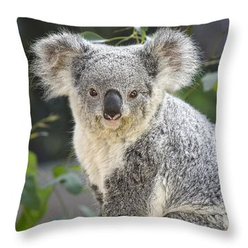 Koala Female Portrait Throw Pillow