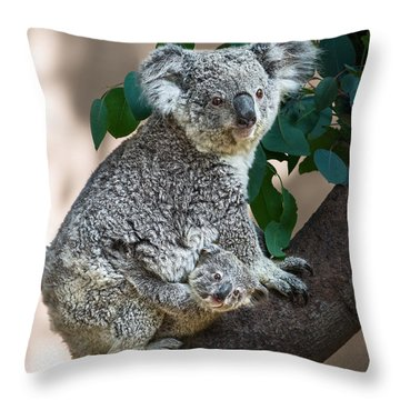Koala Joey And Mom Throw Pillow